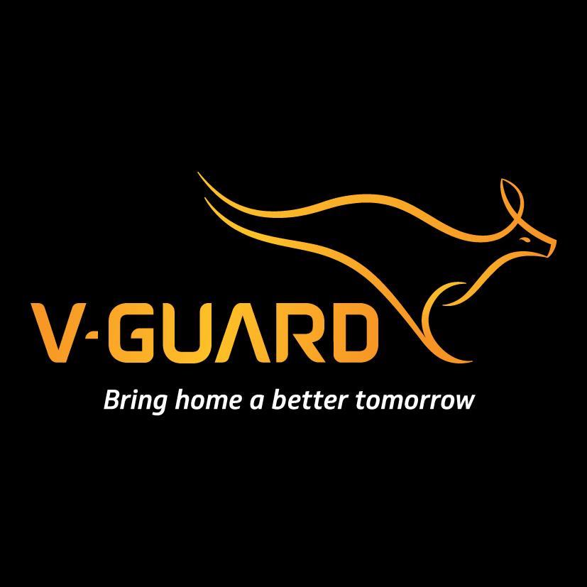 Fundamental Analysis of V-Guard Industries