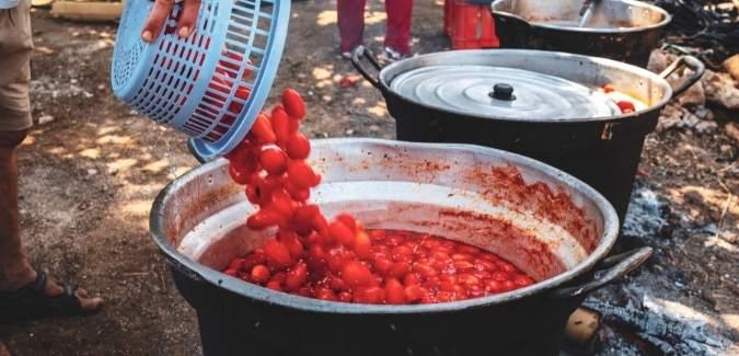 Tomato sauce making